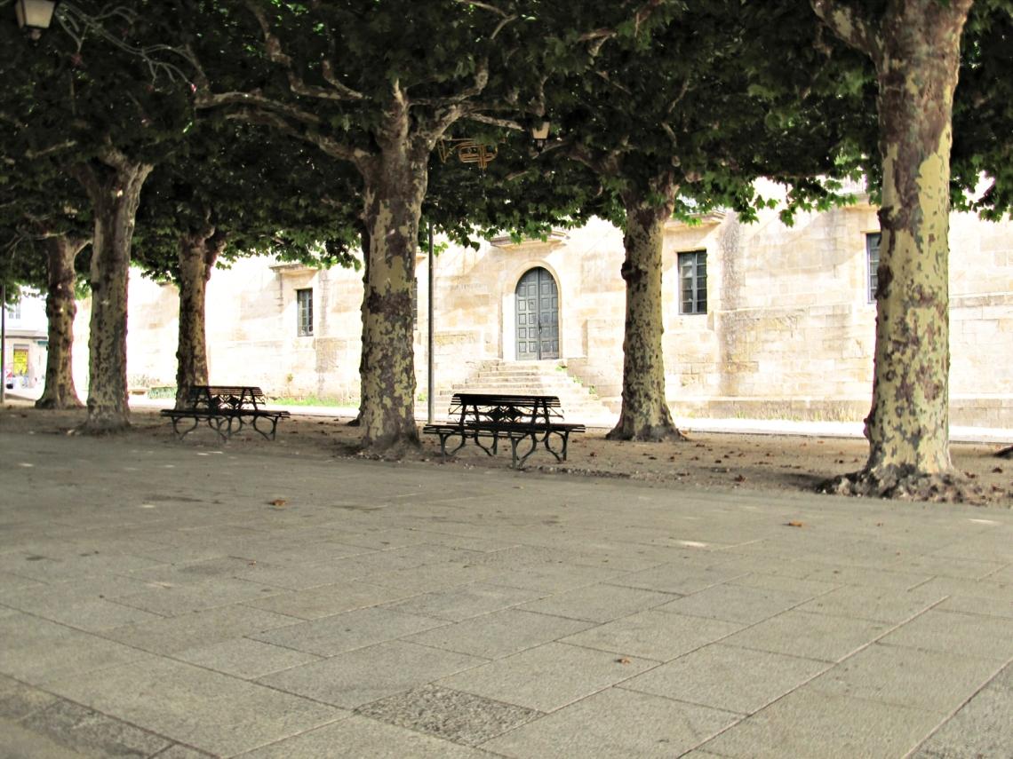 Alameda revisitada, también en verano, con el follaje en su mejor momento.