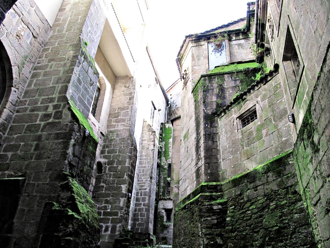 Curiosa instantánea de los muros cubiertos por el musgo en la Catedral de Santiago de Compostela (Galicia, España - otoño de 2012)