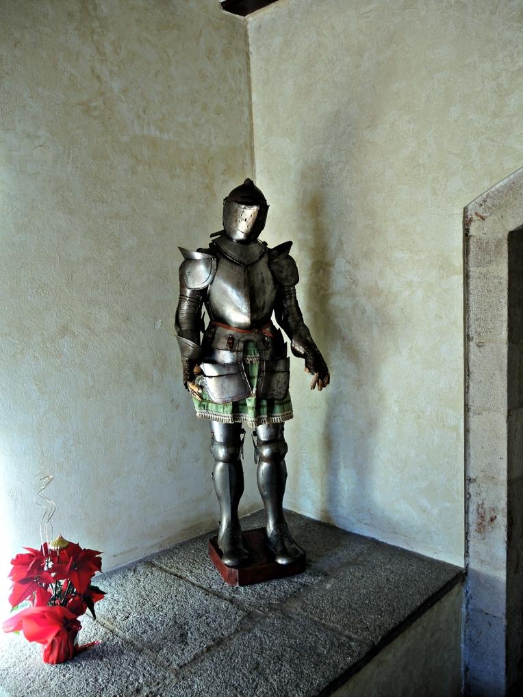 Caballero de brillante armadura junto a flores de Navidad