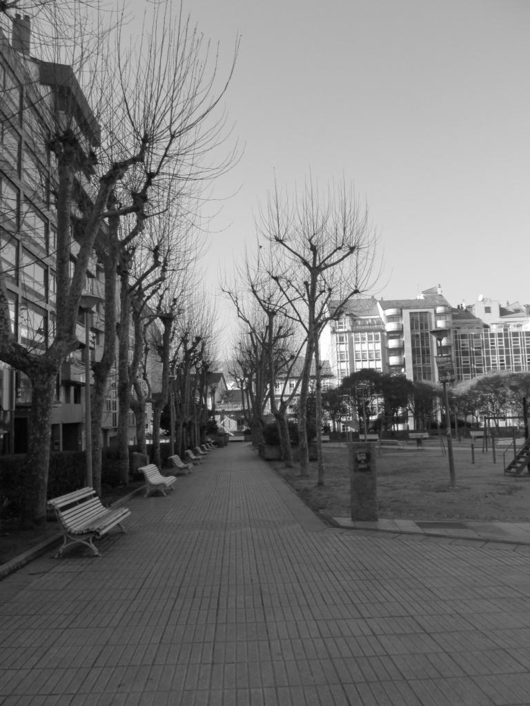 Soledad. Nadie a la vista en el parque Invierno, frío invierno - Ourense, Galicia